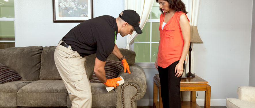 Eureka, CA carpet upholstery cleaning
